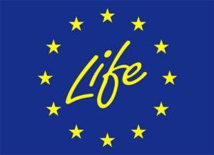 Logo Life +